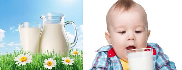 Вкус молока