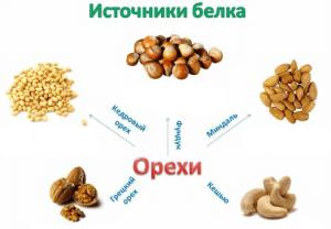 Содержание белков