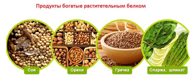 Содержание белка в орехах